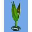 Демонстрационная модель цветка пшеницы из пластика