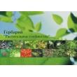 Гербарий «Растительные сообщества
